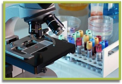 Rheology Lab