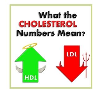 Cholesterol Numbers Mean