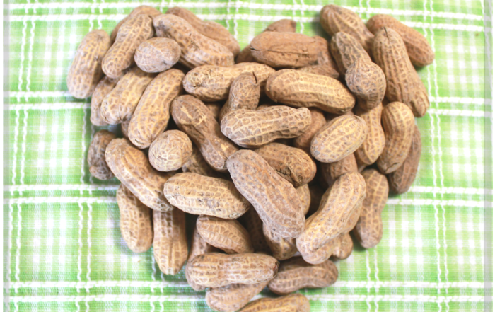 Peanuts May be Beneficial to Your Heart Health